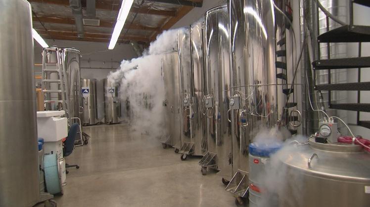 cryonics-merl
