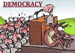 funny-democracy-pictures-images-photos